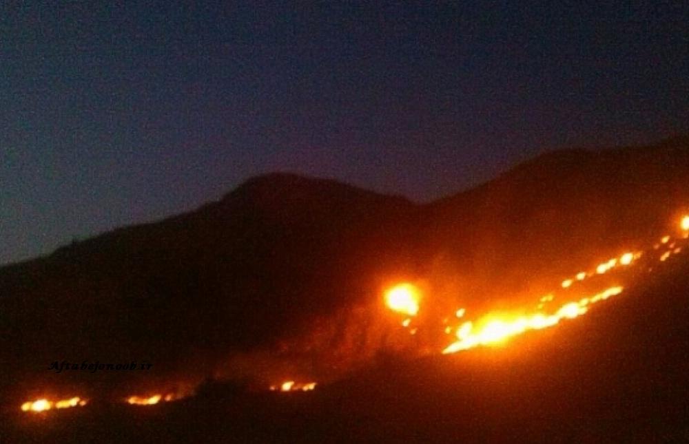 آتش سوزی ارتفاعات کوی کارکنان گچساران مهار شد
