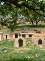 واکنش جمالی به قبرستانهای طایفهای؛ مسائل سنتی که با سلامت مردم مغایرت دارند، جمع شوند