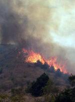 آتش سوزی جنگل ها و مراتع کوه خامی در گچساران مهار شد