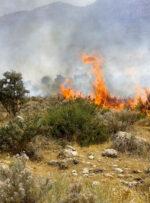 آتش سوزی در ۲ منطقه باشت همچنان ادامه دارد
