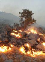 آتش سوزی کوه لار باشت همچنان ادامه دارد
