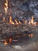آتش به بیش از یک هزار هکتار جنگل و مرتع کهگیلویه و بویراحمد خسارت زد
