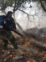 آتشسوزی همچنان منابع جنگلی کهگیلویه و بویراحمد را تهدید میکند