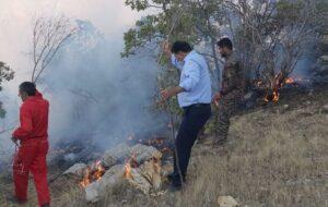 آتشسوزی جنگلها و مراتع منطقه مزیز گناوه لری در گچساران مهار شد